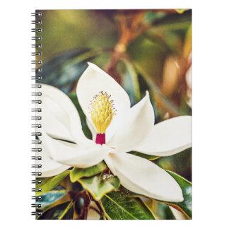 Carnet Magnolia magnifique du Mississippi