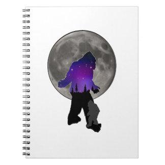Carnet Marcheurs de lune