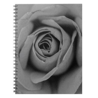 Carnet monochromatique de rose