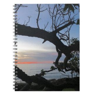 Carnet Océan et arbres