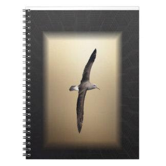 Carnet Oiseau d'albatros outre de la côte de la Nouvelle