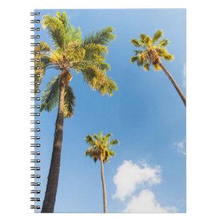 Carnet Palmiers
