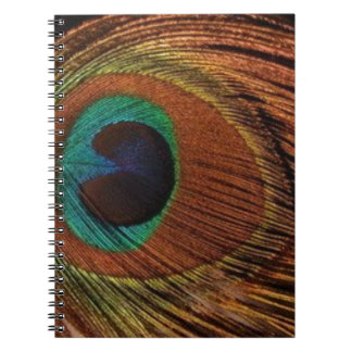 Carnet peacocks-plume-1red et or