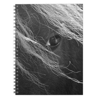 Carnet Photographie noire et blanche de cheveux de poney