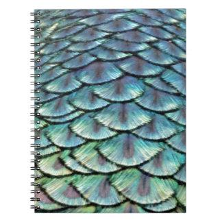 Carnet Plumes de queue de paon