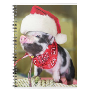 Carnet Porc le père noël - porc de Noël - porcelet