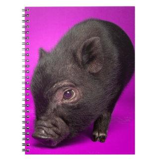 Carnet Porc noir de bébé