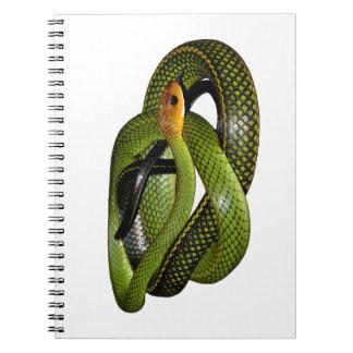 Carnet Ratsnake Noir-mis en marge ou serpent de rat vert