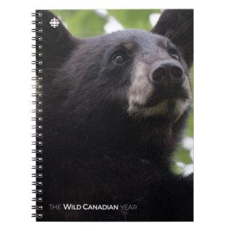 Carnet Ressort - ours noir