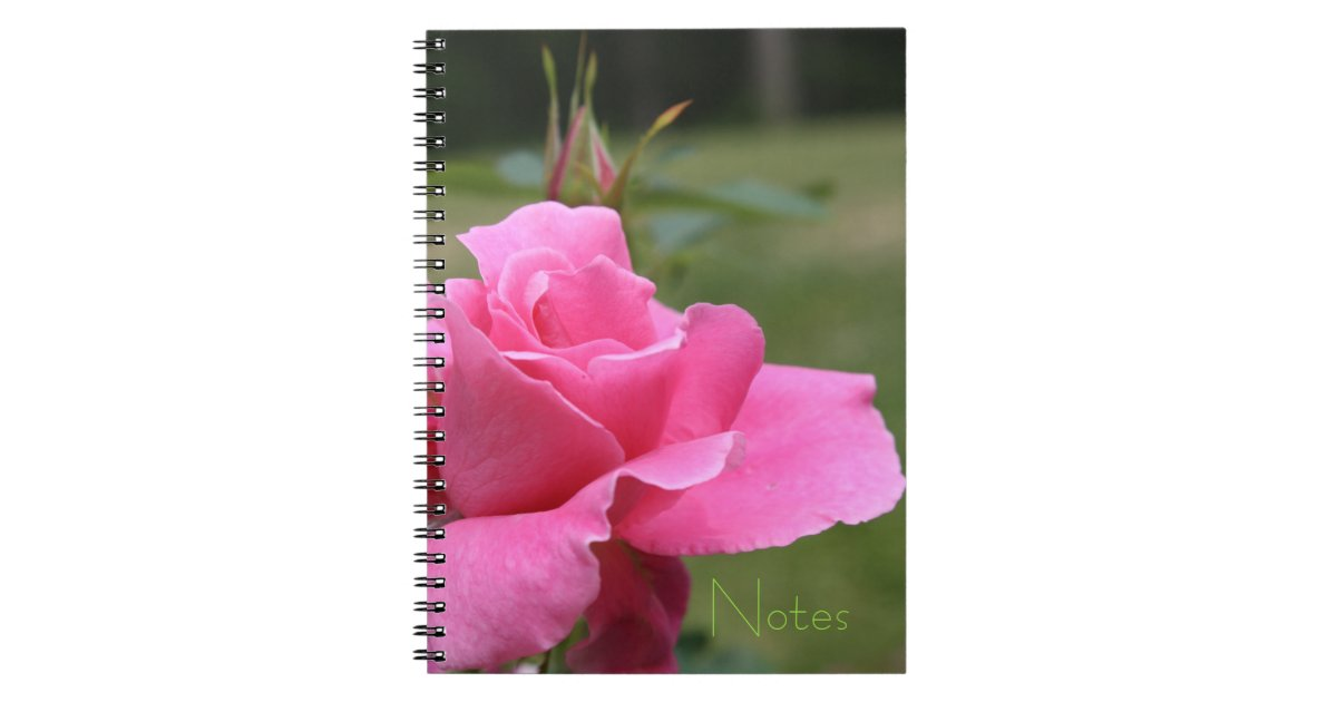 carnet de roseraie zazzle