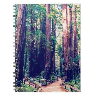 Carnet Séquoias de Californie