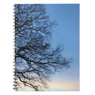 Carnet Silhouette d'arbre dans un ciel bleu d'hivers