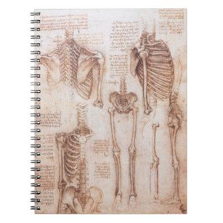 Carnet Squelettes humains d'anatomie par Leonardo da