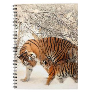 Carnet Tigres
