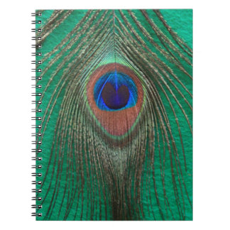 Carnet vert de plume de paon