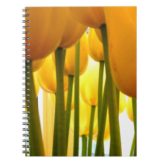 Carnet yellow Tulips = happy Tulips