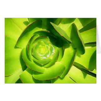 Carré vert de Succulent par Amy Vangsgard Cartes