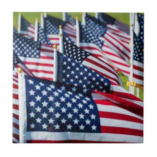 Carreau 400 drapeaux ondulant fièrement dans un domaine