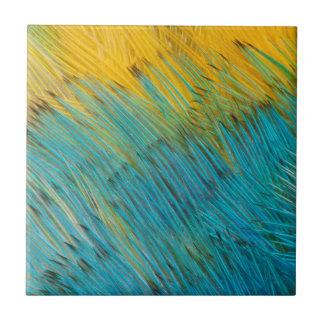 Carreau Abrégé sur plume de perroquet d'Amazone