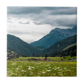 Carreau Alpes autrichiennes
