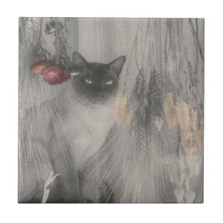 Carreau Animal noir et blanc de chat siamois
