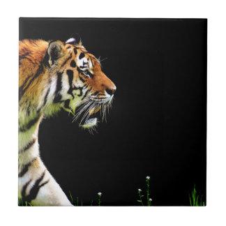Carreau Approche de tigre - illustration d'animal sauvage