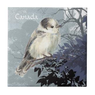 Carreau Aquarelle grise, gris ou oiseau de ressortissant