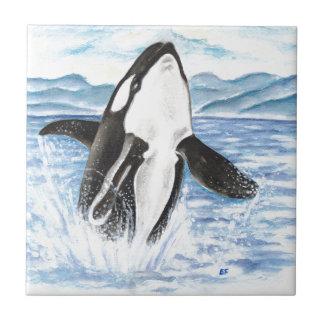 Carreau Aquarelle ouvrant une brèche la baleine d'orque