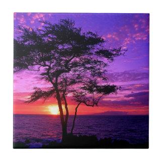 Carreau Arbre violet et rose de coucher du soleil