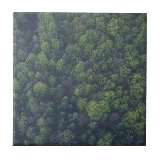 Carreau Arbres verts