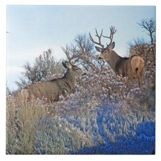 Carreau Art de faune de photoshop de photographie