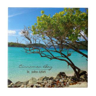Carreau Art tropical de tuile de St John USVI de baie de