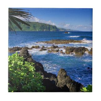 Carreau Belle Hawaï