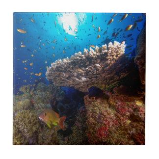 Carreau Cadeau tropical de mer de corail de la Grande