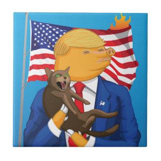 Carreau Catastrophe américaine