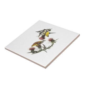 Carreau Chardonneret américain par Audubon