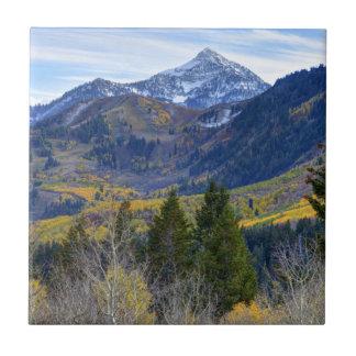 Carreau Chute à la crête de cascade et Sundance de boucle