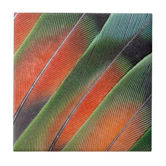 Carreau Conception de plume de queue de perruche
