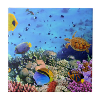 Carreau Créatures colorées de récif coralien