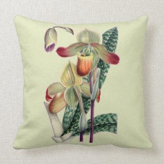 Carreau de Celadon d'orchidée de Madame pantoufle Coussin