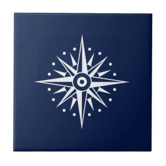 Carreau de céramique bleu et blanc, étoile