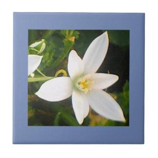 Carreau de céramique fleurissant blanc de ressort