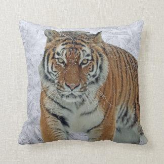 Carreau de tigre coussin
