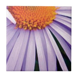 Carreau demi d'art de fleur