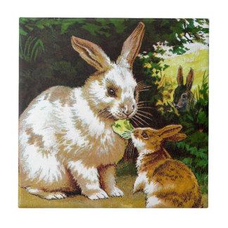Carreau Dessin vintage : Petits lapins