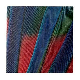 Carreau Détail Bleu-Dirigé de plume de perroquet
