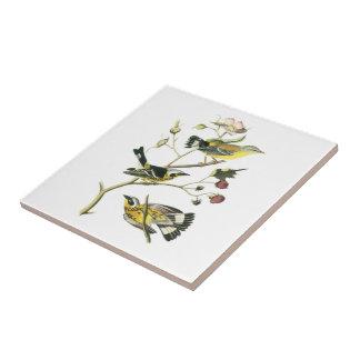 Carreau Fauvette de magnolia par Audubon