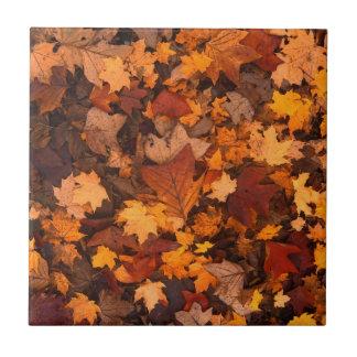 Carreau feuillage d'automne