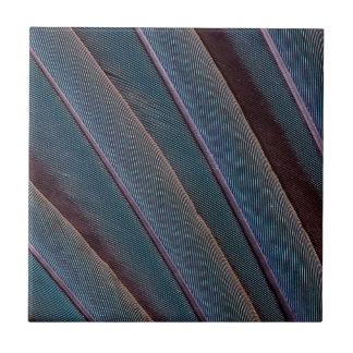 Carreau Fin bleue de plume d'ara