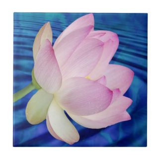 Carreau Fleur et signification de Lotus sensible